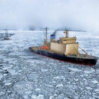 Sorgen um Arktis: Plastikmüll ist schon da und nimmt zu